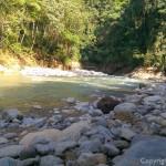 Bukit Lawang - Campement
