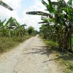 Indonésie - Kalibaru