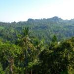 Indonésie - Munduk