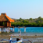 Bali - Pemuteran