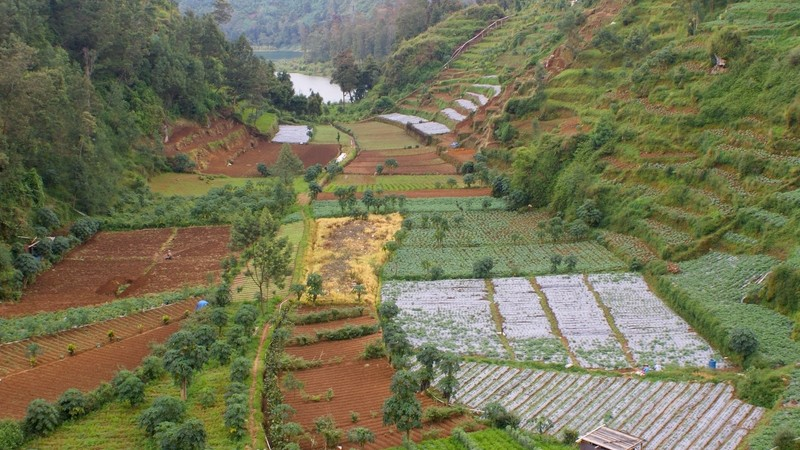 Indonésie - dieng