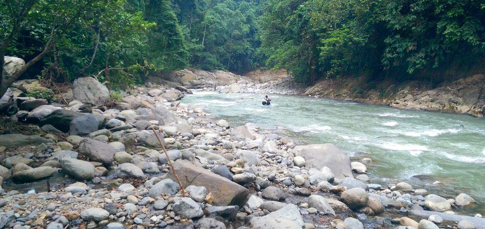 Sumatra - Trekking Bukit Lawang